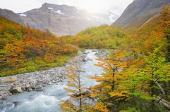 Autumn view of the river. Royalty Free Stock Photo