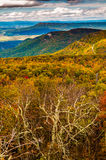 Autumn view of the Shenandoah Valley and Appalachian Mountains f Royalty Free Stock Photo