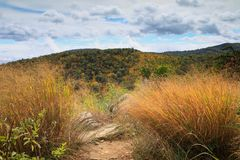 Shenandoah National Park Virginia. An autumn view  from Skyline Drive in Shenandoah National Park, a geographic and cultural region of Virginia stretching across Royalty Free Stock Images