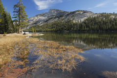 Autumn view of Tenaya Lake in Yosemite Royalty Free Stock Photo
