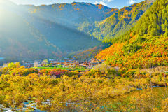 Autumn view of tibetian village. Stock Image