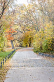 Autumn view of trail on the riverside stock photo