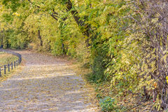 Autumn view of trail on the riverside royalty free stock images
