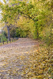 Autumn view of trail on the riverside stock photography