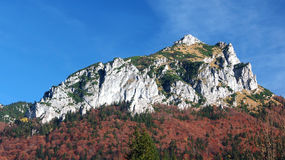 Autumn view of Velky Rozsutec, Slovakia Stock Image