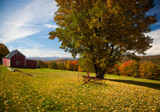 Autumn view in Vermont Royalty Free Stock Images