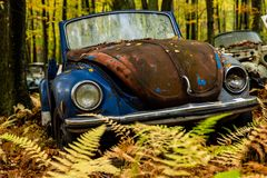 Vintage VW Beetle - Volkswagen Type I - Pennsylvania Junkyard stock photo