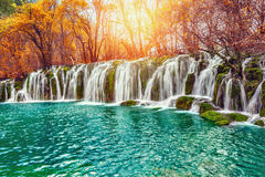 Autumn view of waterfall with pure water. Stock Images