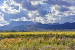 Autumn view of yellow fields and blue mountains against a cloudy royalty free stock photos