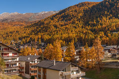 Autumn view of Zermatt resort, Valais Royalty Free Stock Photography