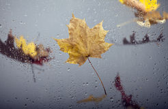 Autumn views through the window Stock Photo