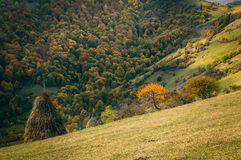Autumn in village. Babintsi, Teteven, Bulgaria Stock Photos