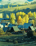 Autumn village  Baihaba, xinjiang,china Royalty Free Stock Image