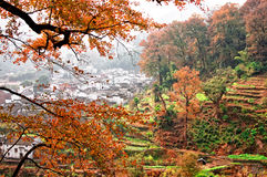 Autumn village Royalty Free Stock Photography
