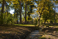 Autumn in a village. Photo of a village in autumn with a stream on a foreground stock images