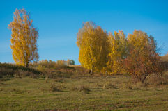 Autumn in Village Royalty Free Stock Photography