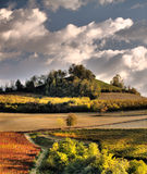 Autumn vineyards. A picture from Langhe, Italy, taken in autumn to emphasize light and warm colors. Look at the dramatic sky stock photography