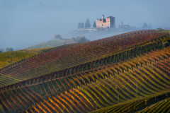 Autumn Vineyards on the hills. At the bottom the Castle of Grinzane Cavour wrapped in fog Stock Photos