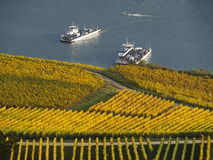 Autumn in the vineyards at the river rhine near Rüdesheim Stock Photo