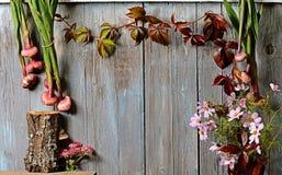 Autumn vintage background Royalty Free Stock Image