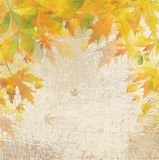 Autumn vintage background. Vintage background with autumn leaves Vector Illustration