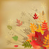 Autumn Vintage Background. Vector Stock Images