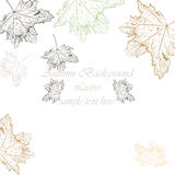 Autumn Vintage background. Vector hand drawn autumn tree leaves pattern. Retro engraved technique Stock Illustration