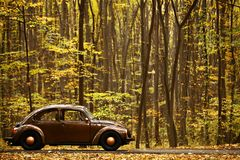 Autumn vintage car Royalty Free Stock Images