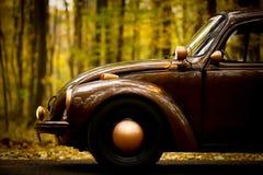 Autumn vintage car Stock Images