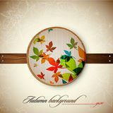 Autumn Vintage Decoration Stock Photography