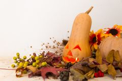 Autumn vintage decoration with pumpkin carved with halloween candle Stock Photos