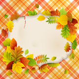 Autumn vintage greeting card. With colorful leaves and place for text. Vector illustration Stock Photography