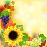 Autumn vintage greeting card on colorful leaves background. With sunflower royalty free illustration