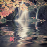 Autumn vintage photo with waterfall Royalty Free Stock Photo