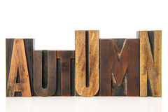 Autumn in vintage text Stock Photography