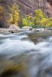 Autumn on the virgin river Royalty Free Stock Photos