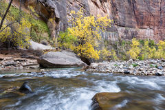 Autumn on the virgin river Stock Photo