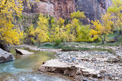 Autumn on the virgin river Stock Images