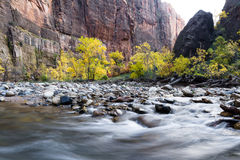 Autumn on the virgin river Royalty Free Stock Photography