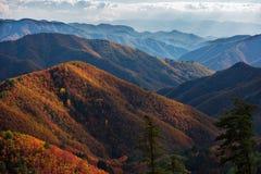 Autumn Vista Foto de archivo libre de regalías