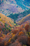 Autumn Vista Imagen de archivo