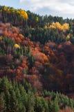 Autumn Vista Fotografía de archivo