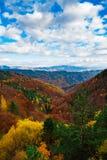 Autumn vista Royalty Free Stock Photos