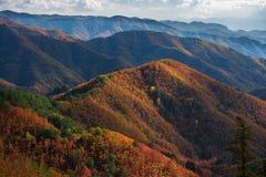 Autumn vista Stock Image