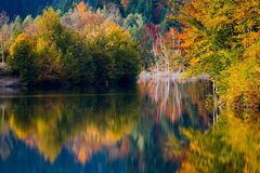 Autumn vivid colors on lake. Autumn on peaceful lake and dense forest Royalty Free Stock Photography