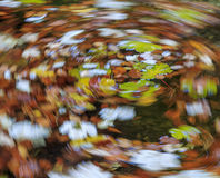 Autumn vortex Royalty Free Stock Images