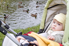 Autumn walk. Pretty baby in baby carriage with ducks Royalty Free Stock Images