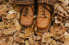 Autumn walk Stock Image