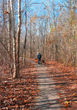Autumn Walk. A man and his dogs take a walk in a park in Texas Royalty Free Stock Photos