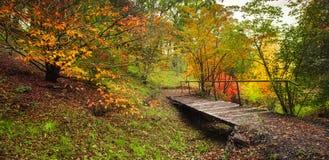 Autumn Walk foto de archivo libre de regalías